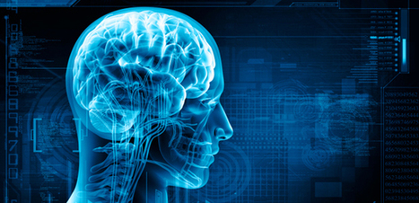 5 Brain-Health Tips from Bodybuilding Neurosurgeon | Managing Technology and Talent for Learning & Innovation | Scoop.it