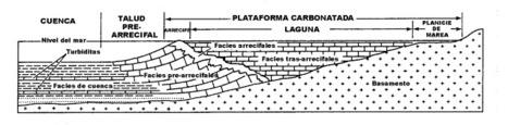 Ambientes de sedimentación carbonatada | Sedimentología | Scoop.it