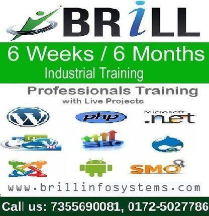 Six Week Training in Chandigarh | Brill Infosystems | Scoop.it