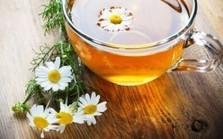 "Chamomile: A Natural Cancer Fighter and Sleep Promoter (""a bedtime cure and companion vs insomnia"") 