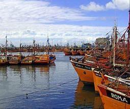 Study highlights snowball effect of overfishing | Sustain Our Earth | Scoop.it