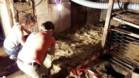 PHOTOS - Des fouilles archéologiques dans le bunker enfoui d'Arcachon | Le Bassin d'Arcachon | Scoop.it