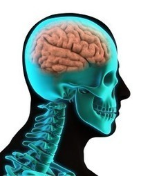 What are the Symptoms of a Traumatic Brain Injury? | Hope4Speech | Scoop.it