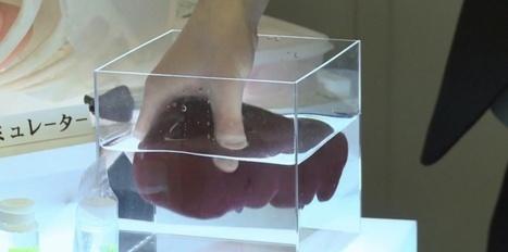 Chirurgie : pour s'exercer, des organes imprimés en 3D plus vrais que nature | CRAKKS | Scoop.it