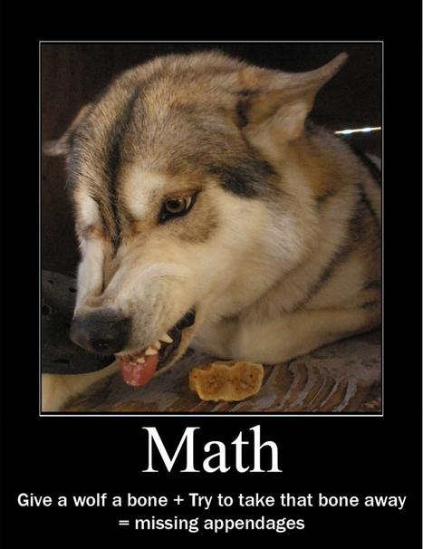 Wolf Math | LOLfreak | Scoop.it
