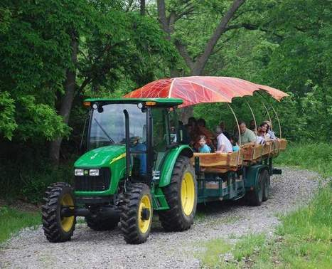 Travel and Adventure: Good times, good deed at Arbor Day Farm | #TreeNews | Scoop.it