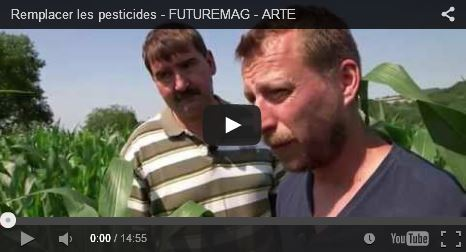 Remplacer les pesticides | Epicurist: In Victus Veritas | Scoop.it