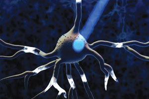 More on Optogenetics and Addiction: Deterring Cocaine Seeking | Alcoholism and the Family | Scoop.it