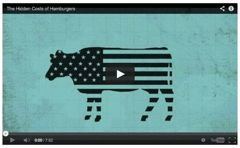 The hidden costs of hamburgers | The Center for Investigative Reporting | @FoodMeditations Time | Scoop.it
