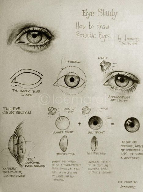 How To Draw Realistic Eyes   Art Life   Scoop.it