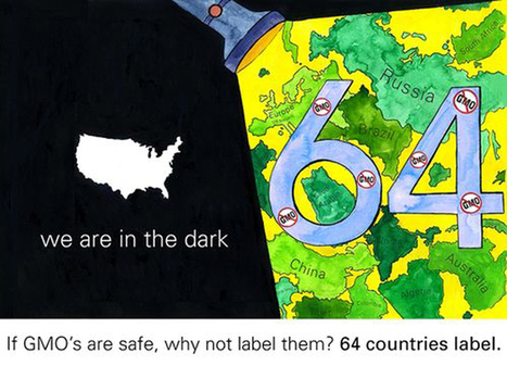 If #GMO's Are Safe, Why Not Label Them? (64 Other Countries Do) #Truth #Monsanto | Messenger for mother Earth | Scoop.it