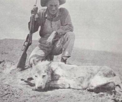 Famous Essay On Hunting, The Killing Game....(blog) | Is Hunting Destroying Mother Earth? | Scoop.it
