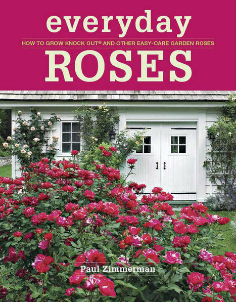 January 2013 Rose Newsletter. Paul's new book, pruning, Rose Chat Radio and more! | Annie Haven | Haven Brand | Scoop.it