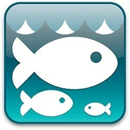SPAIN: ItsasFish - New mobile application for rapid identification of fish species | Visit Spain | Scoop.it