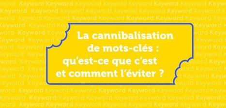 La cannibalisation de mots-clés: comment l'éviter ? | Rédaction web, contenu pour le web | Scoop.it