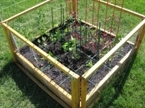 Square Foot Gardening | Vintage Living Today For A Future Tomorrow | Scoop.it