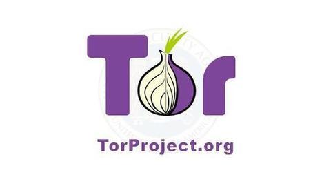 Cómo espía la NSA a los usuarios de Tor | defensa digital | Scoop.it