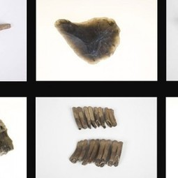 Neanderthal stone tools and flakes discovered in Netherlands –... | History | Scoop.it
