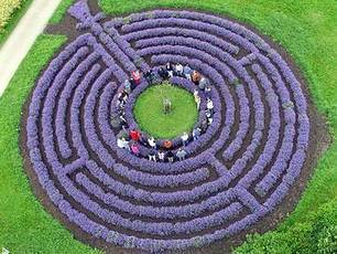 A Labyrinth in Germany | Gardening Life | Scoop.it