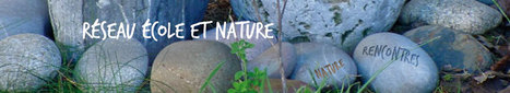 Fiches pédagogiques | Réseau Ecole et Nature | Insect Archive | Scoop.it