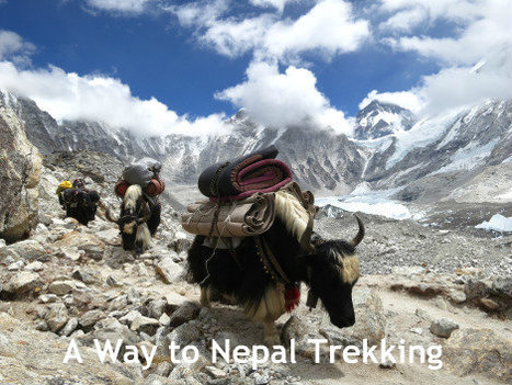 Story of Trekking in Everest   Trekking Adventures   Scoop.it