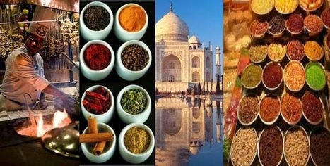 Break Away: Explore the Culinary tours in India | Travel In India | Scoop.it