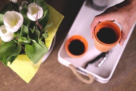 Tendances vin & cocktail : sortez les pots de fleurs! | AMAP - Bio | Scoop.it