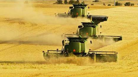 Industrial-scale farming denounced by international experts - Farmers Weekly | The Barley Mow | Scoop.it