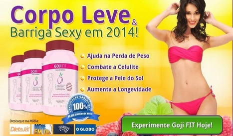 Goji Fit Revisão – Ganho Corpo Saudável e Sexy Belly Facilmente! | My Daily Dose For Healthy Body! | Scoop.it