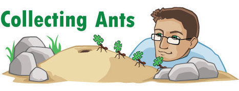 Collecting Ants | ASU - Ask A Biologist | All About Ants | Scoop.it