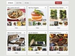 Comment tirer profit de Pinterest pour votre entreprise de vente en ligne | Stratégie Marketing et E-Réputation | Scoop.it