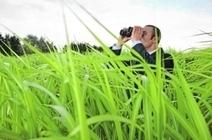 L'espionnage est dans le pré | Questions de développement ... | Scoop.it