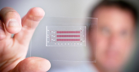 Credit Card-Sized Chip Diagnoses HIV and Provides T Cell Counts on the Spot | healthcare technology | Scoop.it