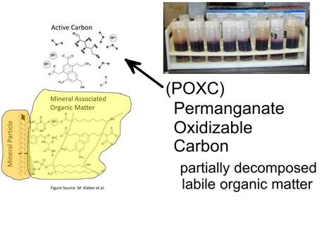 La matière organique est la clé de la santé des sols ! Faites doser le POXC ! | MOF Matière Organique Fugace réactive du sol | Scoop.it