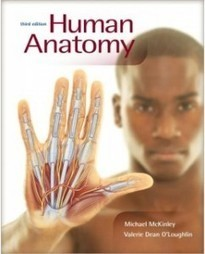 Test Bank For » Test Bank for Human Anatomy, 3rd Edition: Michael McKinley Download | Anatomy & Physiology Test Bank | Scoop.it