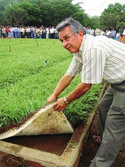 Hidropónico, Forraje sin chaqueo | AGRONOMIA | Cultivos Hidropónicos | Scoop.it