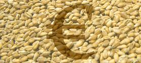 La spéculation sur les matières premières alimentaires nuit à la réputation des banques | Questions de développement ... | Scoop.it
