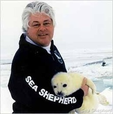 Sea Shepherd :: The Canadian Seal Hunt is Dead! Long Live the Seals! | Earth Island Institute Philippines | Scoop.it