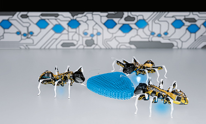 BionicANTs | Festo Corporate | Education Technology | Scoop.it
