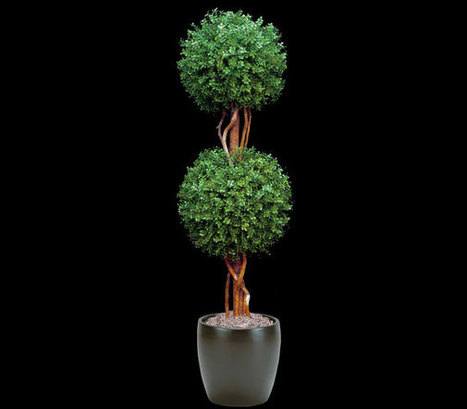Artificial Boxwood 2 Ball Topiary | Artificial Outdoor Plants | Scoop.it