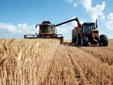 Une première estimation d'environ 40 millions de quintaux - Economie - El Watan   Agriculture et Alimentation méditerranéenne durable   Scoop.it