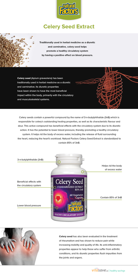 Benefits of Natural Factors Celery Seed Extra | my article | Scoop.it