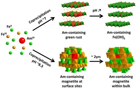 Trivalent Actinide Uptake by Iron (Hydr)oxides | Mineralogy, Geochemistry, Mineral Surfaces & Nanogeoscience | Scoop.it