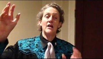 Dr. Temple Grandin on Fear in Horses | horses | Scoop.it