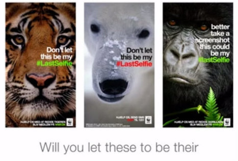 WWF lance une campagne choc via SnapChat | Social Media | Scoop.it