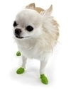 Pawz Dog Boots | USA Made Pet Products | Scoop.it