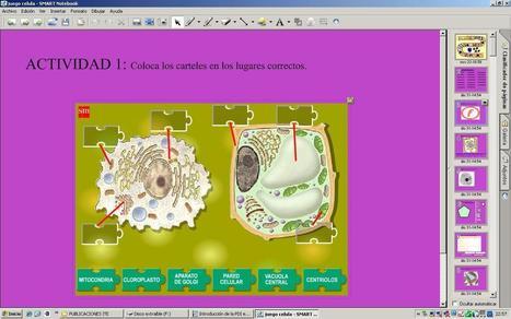 10 pasos para crear contenidos para una PDI | Observatorio Tecnológico | Recursos para el Uso de la Pizarra Digital Interactiva | Scoop.it