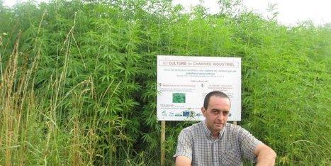 Des perspectives autour du chanvre, de l'agneau, du lait et de la noix en Sarladais | Agriculture en Dordogne | Scoop.it