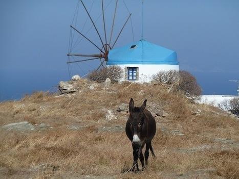 Les Cyclades : les îles du Grand Bleu   Guide évasion   Guide de voyage   Scoop.it