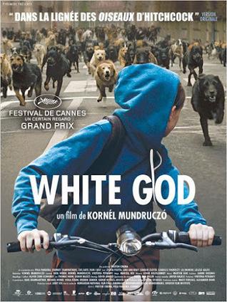 White God, le thriller qui a du chien   LA Ciné News   Scoop.it